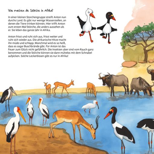 Rückseite Kinderbuch Storch