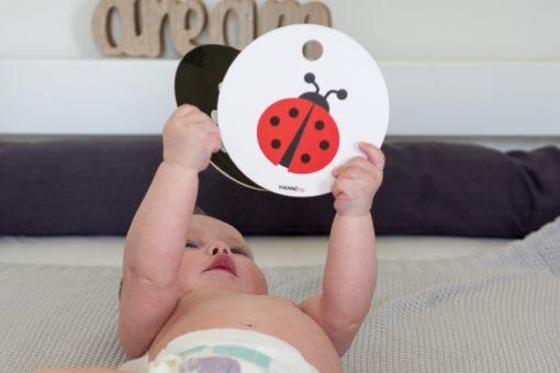 Babyspielzeug Kontrastkarten ab 0 Monaten